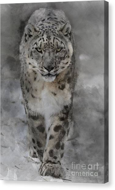 Canvas Print featuring the photograph Snow Leopard II by Brad Allen Fine Art