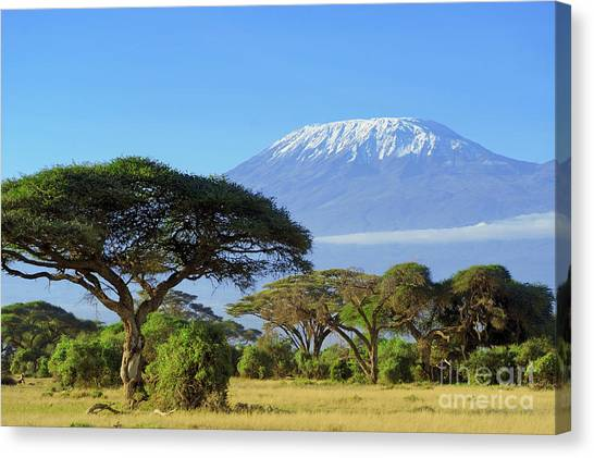 Horizontal Canvas Print - Snow On Top Of Mount Kilimanjaro In by Volodymyr Burdiak
