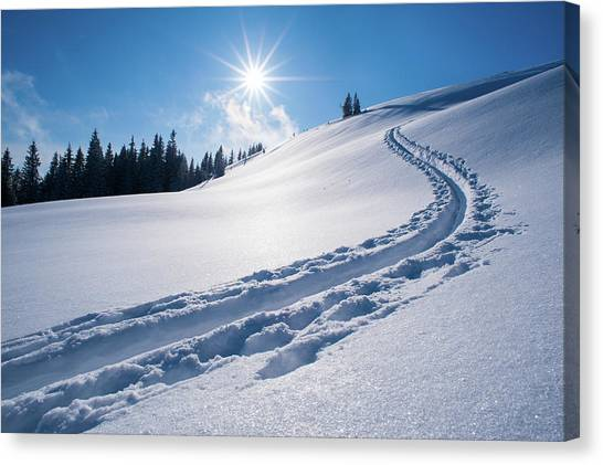 Snow Track Of A Backcountry Skier In Canvas Print by Olaf Broders