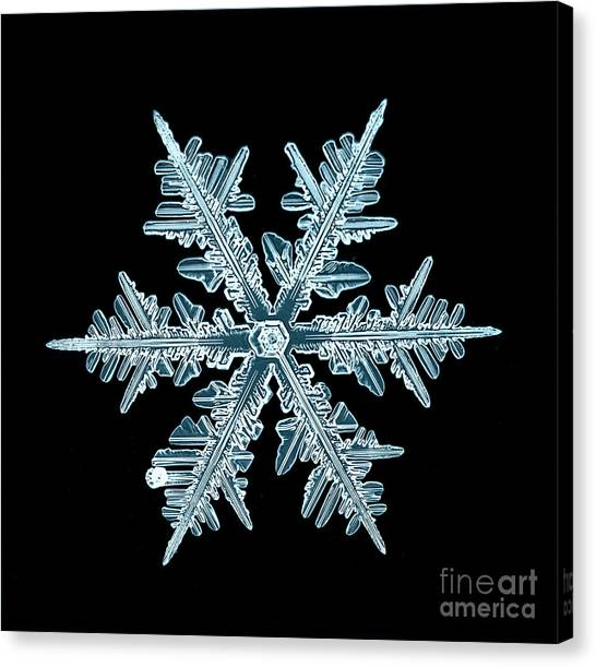 Snowflake Isolated Natural Crystal Canvas Print by Kichigin