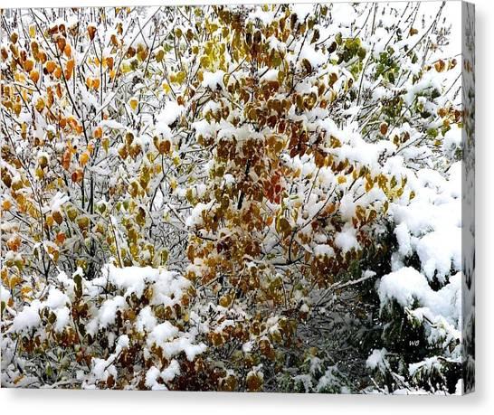 Lilac Bush Canvas Print - Snowy Autumn Lilac by Will Borden