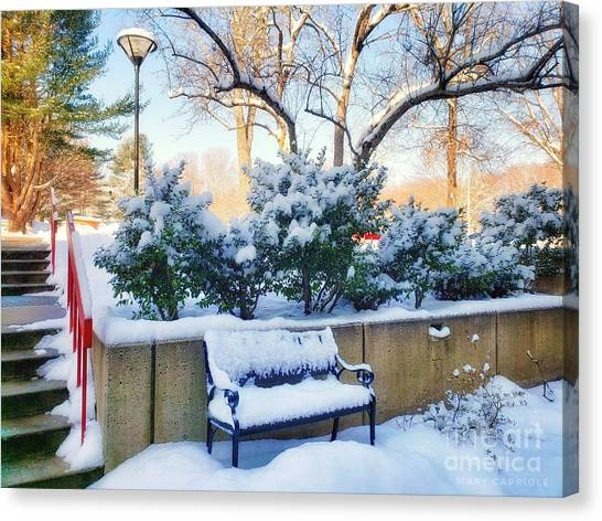 Snowy Bench Canvas Print