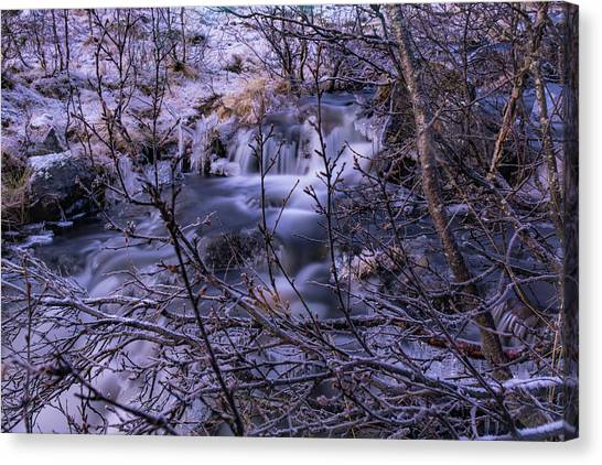 Snowy Forest With Long Exposure Canvas Print