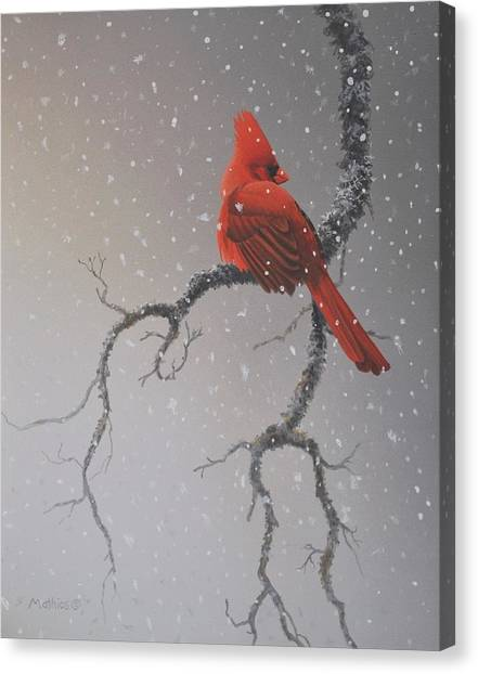 Snowy Perch Canvas Print