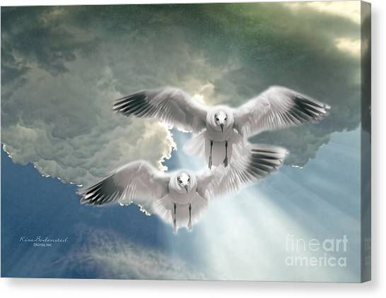 Soaring On A Ray Of Sunlight Canvas Print