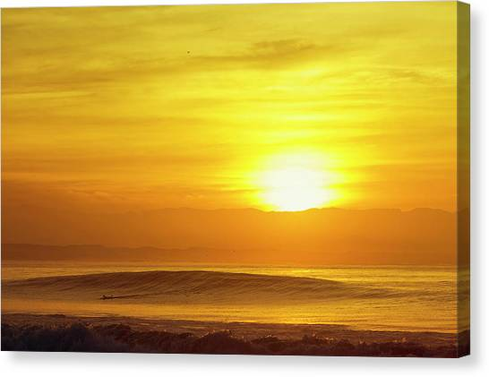 Canvas Print featuring the photograph Solo by Nik West