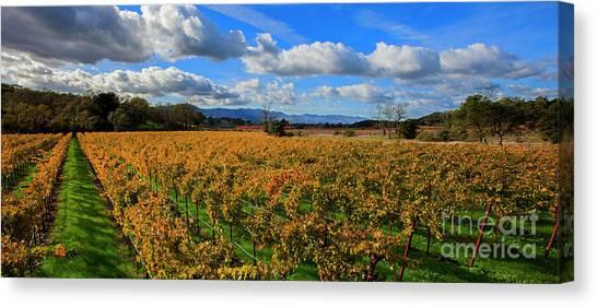 Sonoma Valley Canvas Print - Sonoma Beauty by Jon Neidert