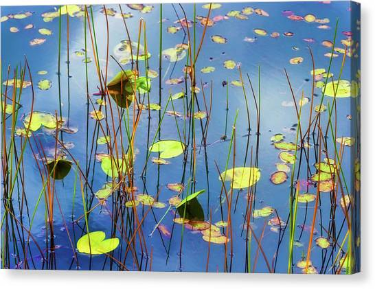 Canvas Print featuring the photograph Soothing Reflections by Dee Browning
