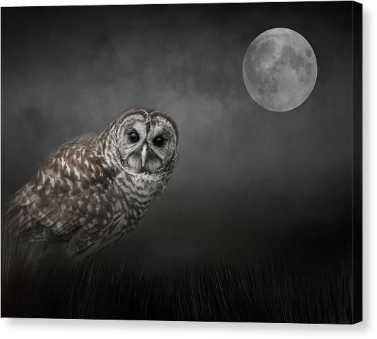 Soul Of The Moon Canvas Print
