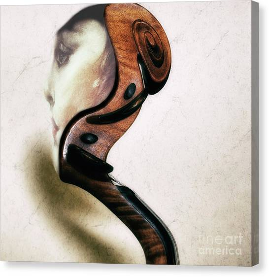 Sound Thoughts  Canvas Print by Steven Digman