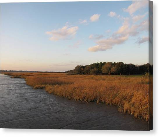 Marsh Grass Canvas Print - South Carolina Marsh In The Afternoon by Daniela Duncan