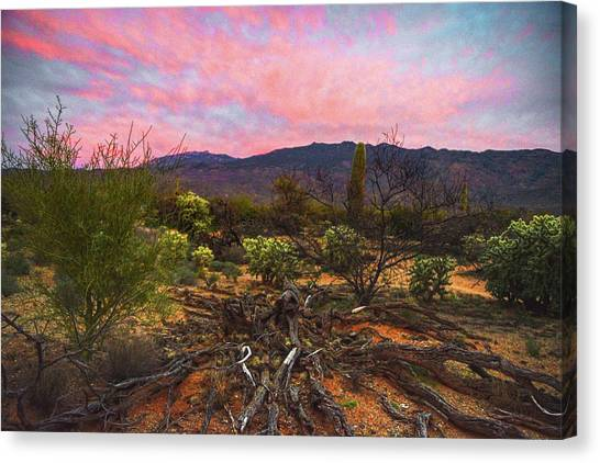 Canvas Print featuring the photograph Southwest Day's End by Chance Kafka