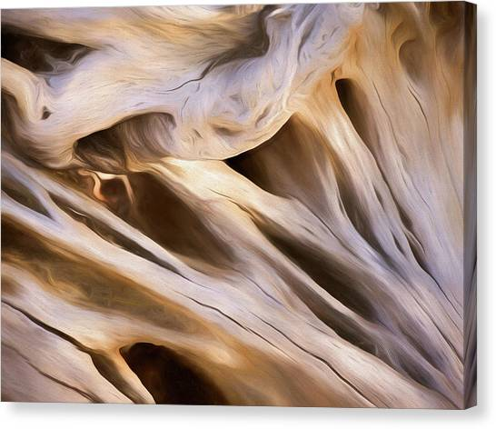 Canvas Print featuring the mixed media Spare Root 3 by Lynda Lehmann