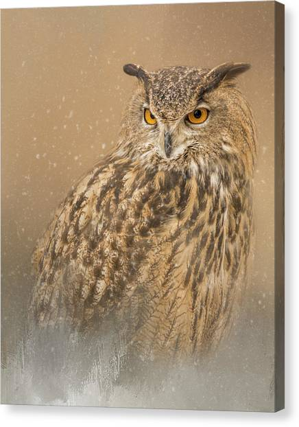 Spirit Of The Snow  Canvas Print