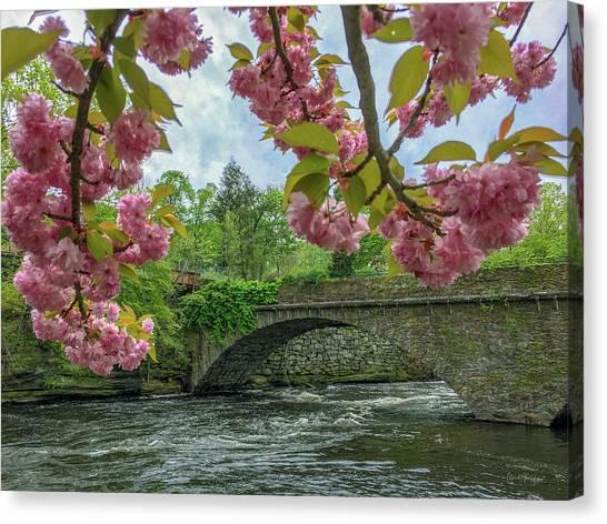 Spring Garden On The Bridge  Canvas Print
