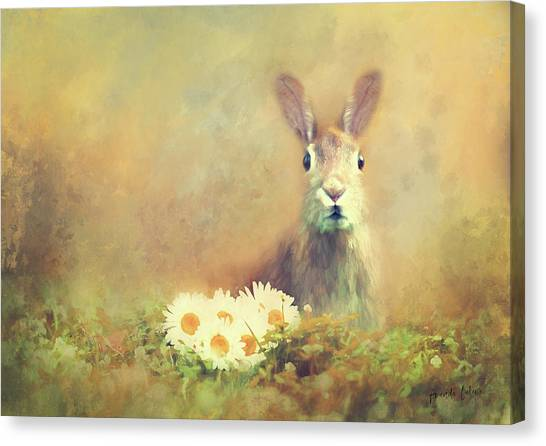 Canvas Print - Spring Hare by Amanda Lakey