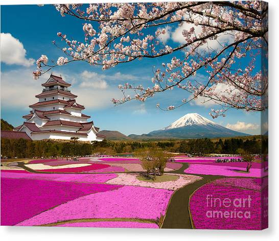 Cherry Blossom Canvas Print - Spring Season In Japan by Krishna.wu