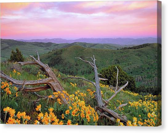 Spring Sunset Canvas Print by Leland D Howard