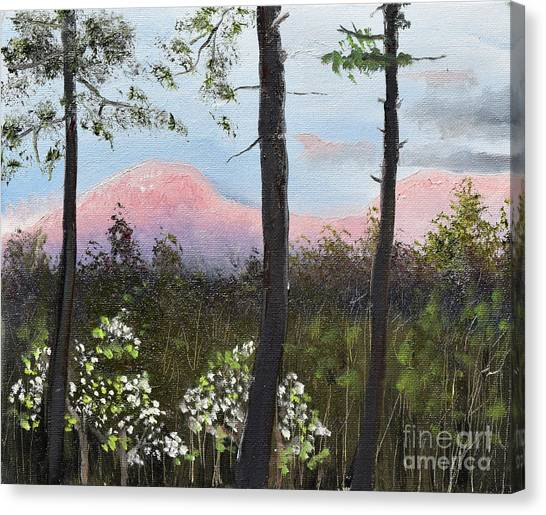 Canvas Print featuring the painting Springtime At Pink Knob In Ellijay by Jan Dappen
