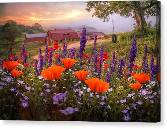 Poppys Canvas Print - Springtime At The Farm by Debra and Dave Vanderlaan