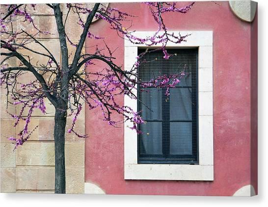 Springtime In Ciutadella - Saludos De La Primavera Canvas Print