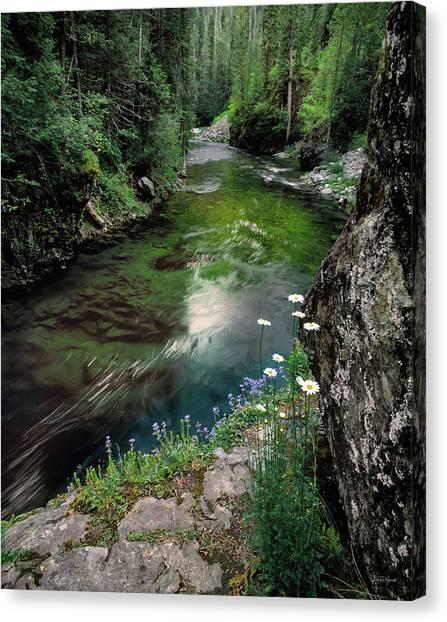 St Joe River Canvas Print by Leland D Howard