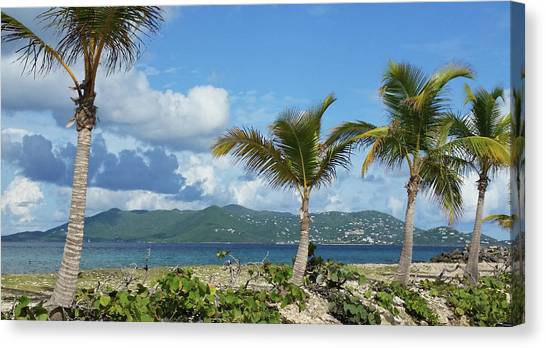 St. John View Canvas Print