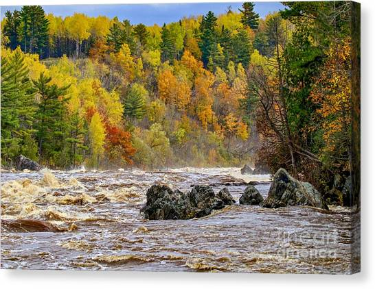 St. Louis River At Jay Cooke Canvas Print