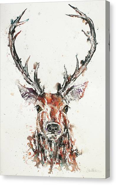 Canvas Print - Stag Portrait by John Silver
