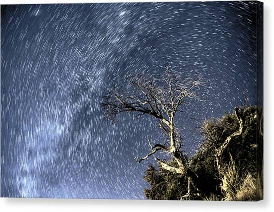 Star Trail Wonder Canvas Print