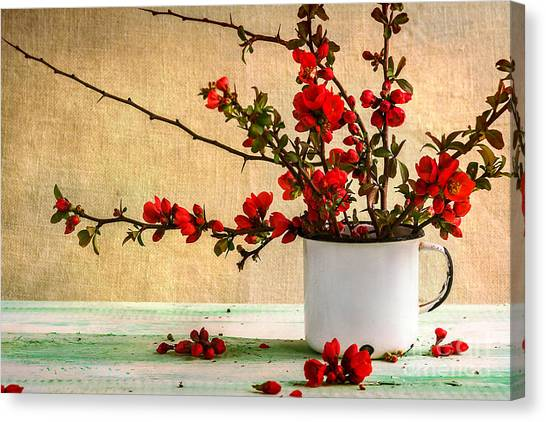 Nature Still Life Canvas Print - Still Life With A Bouquet Of Barberry by Yotka