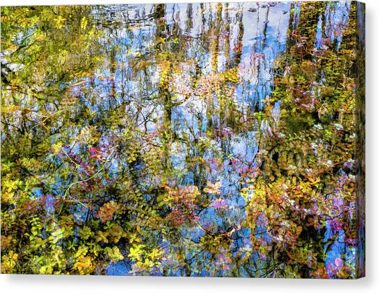 Stillness Holds Everything Canvas Print
