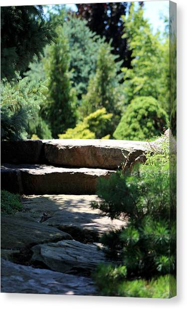 Stone Stairs In Chicago Botanical Gardens Canvas Print