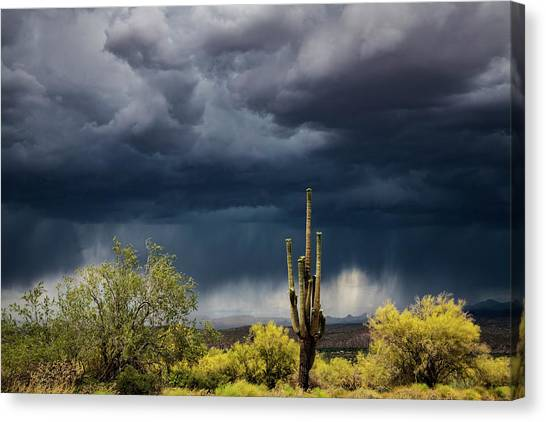 Canvas Print - Stormy Sonoran Skies  by Saija Lehtonen