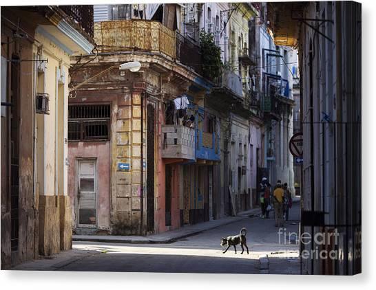 Urban Decay Canvas Print - Street Of Havana, Cuba by Danm12