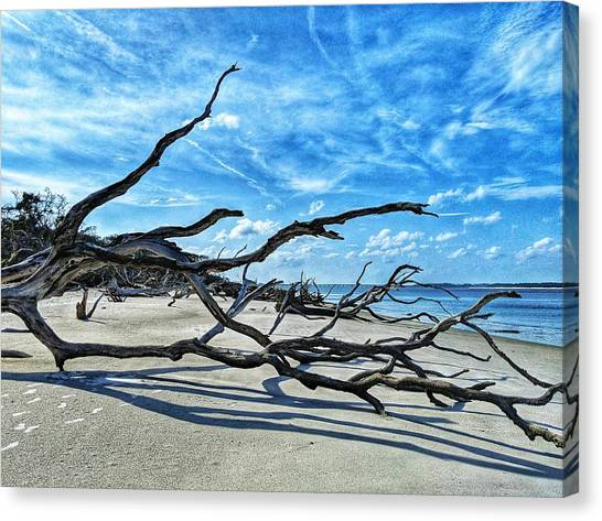 Stretch By The Sea Canvas Print