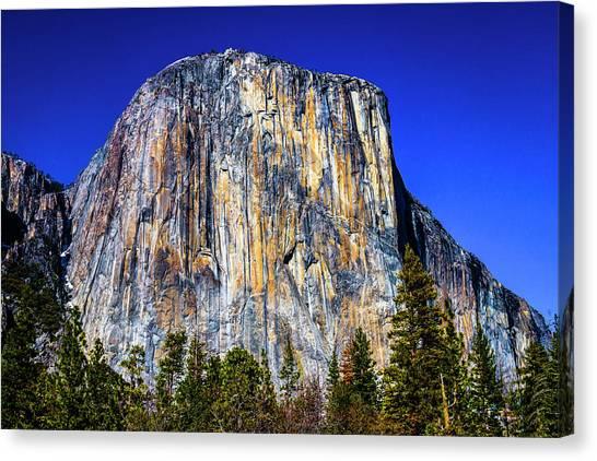 Treeline Canvas Print - Striking El Capitan by Garry Gay