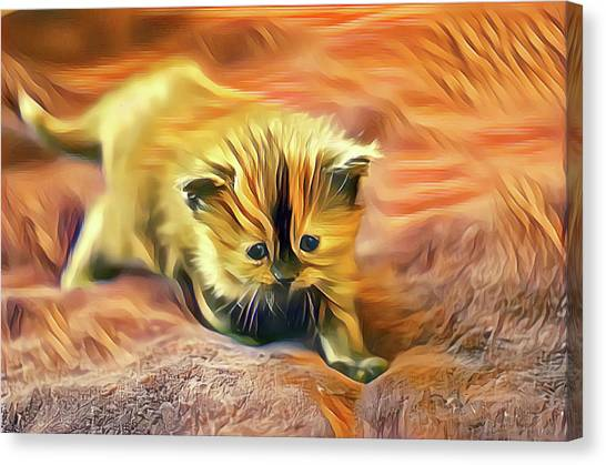 Striped Forehead Kitten Canvas Print