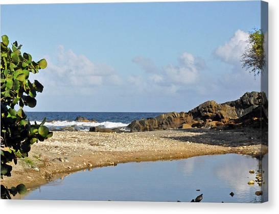 Stumpy Bay Beach Canvas Print