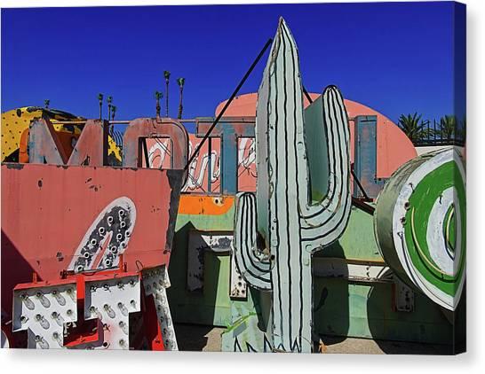 Canvas Print - Succulent  by Skip Hunt