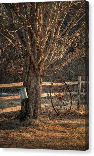 Sugaring Season Canvas Print
