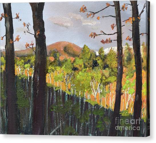 Canvas Print featuring the painting Summer At Pink  Knob In Ellijay by Jan Dappen