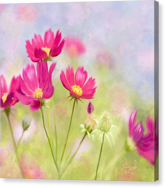 Summer Blossom Canvas Print
