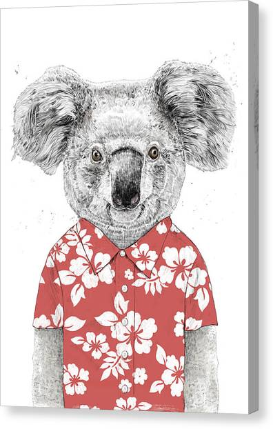 Koala Canvas Print - Summer Koala by Balazs Solti
