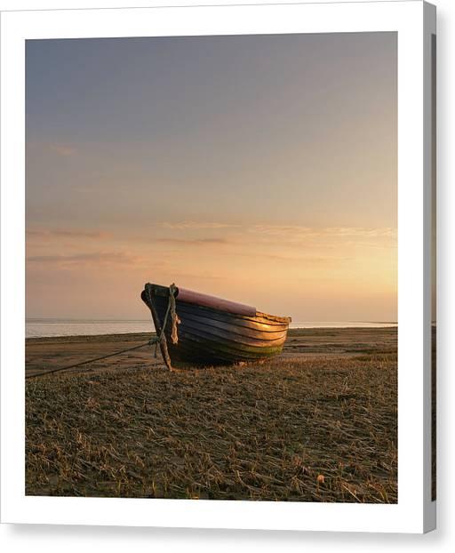 Fineart Canvas Print - Sun Kissed  by Mark Mc neill