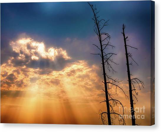 Sunbeams Canvas Print