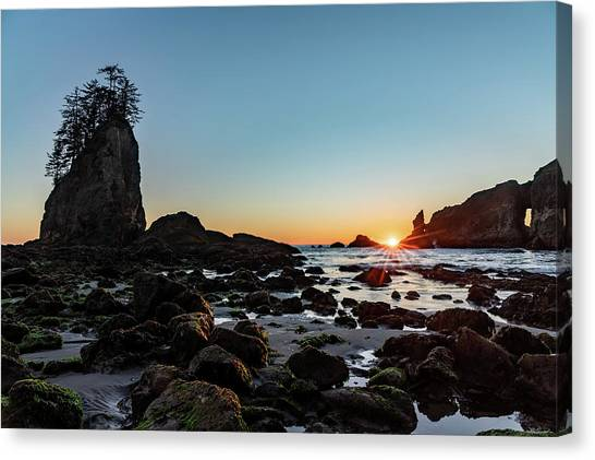 Sunburst At The Beach Canvas Print