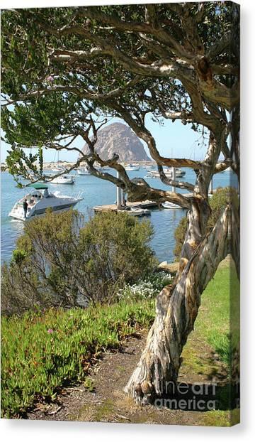Sunny Day At Morro Bay Canvas Print