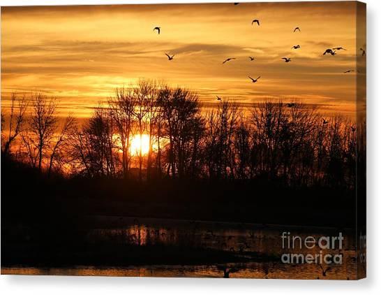 Canvas Print - Sunrise Flight by Nick Gustafson