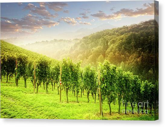 Canvas Print featuring the photograph Sunrise Over Styria by Scott Kemper